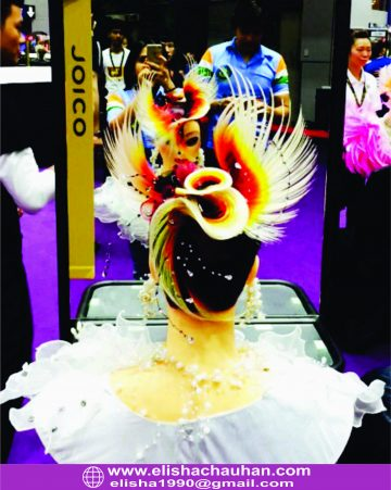 Elisha Chauhan_s Work at Asia Cup in Hair by Night category